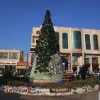 شجرة الميلاد بالعيزرية.. بصور الشهداء