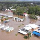 هروباً من الفيضانات.. عناكب سامة تروع أهالي مدينة سيدني