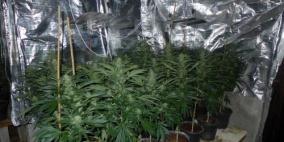 ضبط مستنبت مخدرات بتجهيزات عالية المستوى