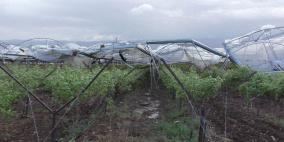 الرياح تلحق أضرارا كبيرة بمزارع المواطنين في الاغور