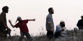 مستوطنون يهاجمون قرية التوانة ويعتدون على مواطنين
