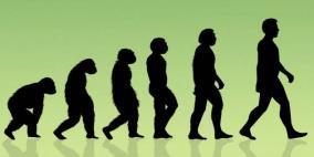"""اكتشاف جديد: الإنسان أصله """"ليس قرد"""""""