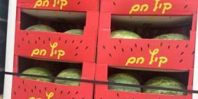 منع استيراد البطيخ من اسرائيل