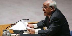 منصور: جلسة هامة يعقدها مجلس الأمن للنظر في أحداث غزة الأخيرة