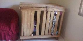وحشية زوجين تدفعهما لحبس طفلين توأم داخل صندوق خشبي يوميا