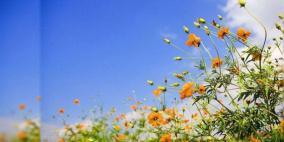 الطقس: الحرارة حول معدلها السنوي العام