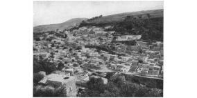 قصة قرية شعب