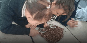 """""""لبنات التعلم""""..مشروعٌ يعلم المهارات الحياتية للطبة ويطور أداء المعلمين"""