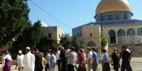 المفتي العام: إطلاق الاحتلال طائرات شراعية فوق الأقصى تحدٍ واضح لمشاعر المسلمين