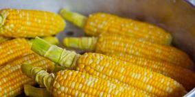 فوائد لجعل الذرة من تسالي الشتاء