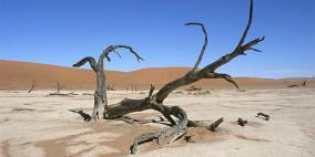 البنك الدولي يقدم 200 مليار دولار لمكافحة تغيُّر المناخ