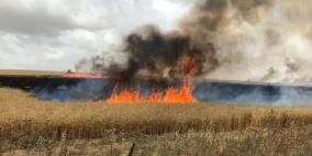 تجدد الحرائق في غلاف غزة بفعل البالونات الحارقة
