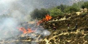 11 حريقا يلتهم 330 شجرة مختلفة بمناطق متفرقة في جنين
