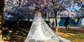 """أمستردام تعلن عن """"زواج السياحة"""".. والعرس الأول في خلال أيام"""
