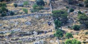 لليوم الثاني.. مستوطنون يقتحمون منطقة برك سليمان