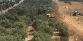 السلطات الإسرائيلية تقتلع أشجار زيتون في قرية الزرازير