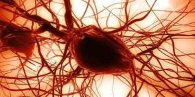 """الخلايا الجذعية.. علاج ثوري مستقبلي ل""""قصور القلب"""""""