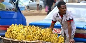 الموز..أكثر من مجرد فاكهة!