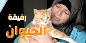 رفيقة الحيوان..حتى في سجون الاحتلال!
