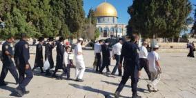 مستوطنون يقتحمون الأقصى وشرطة الاحتلال تدنس باب الرحمة