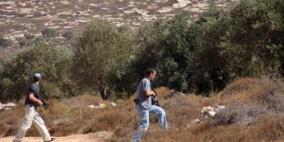 مستوطنون يهاجمون قاطفي الزيتون