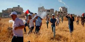 الاحتلال يقمع المشاركين في يوم تطوعي لقطف الزيتون في اللبن الشرقية