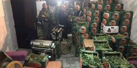ضبط 3 أطنان من المارجوانا بقيمة 15 مليون شيقل في اريحا