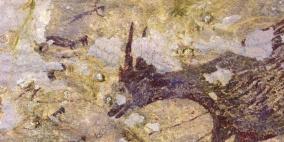 """حيوانات وأشباه بشر.. اكتشاف """"أقدم عمل فني في التاريخ"""""""