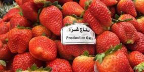 إسرائيل توافق على استيراد منتجات زراعية من غزة