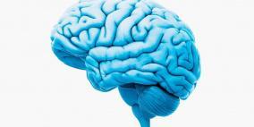 دراسة طبية تربط الزهايمر بوجود بروتينات في الأدمغة