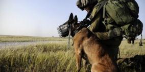هكذا تعمد جنود الاحتلال ترك كلب بوليسي ينهش رقبة طفل قاصر خلال الاعتقال!