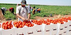 خبير اقتصادي: على الحكومة اتخاذ خطوات دولية لردع القرار الإسرائيلي
