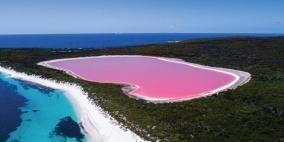 بحيرة وردية