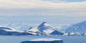 عفن قديم في القطب الشمالي قد يصبح دواء جديدا لعلاج السرطان