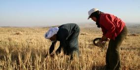 وزير الزراعة يعلن تقديم مساعدات عينية للمزارعين المتضررين