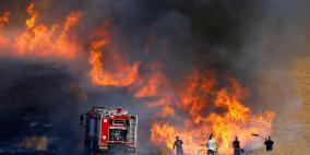 جنين: حرائق تلتهم 1200 شجرة