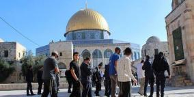 الاحتلال نفذ 47 اقتحاما للأقصى ومنع رفع الأذان 96 وقتا في الإبراهيمي