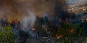 تواصل اطفاء الحرائق في الجليل وتوسع اندلاعها في سوريا ولبنان