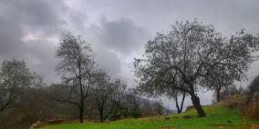 الطقس: الحرارة أقل من معدلها وفرصة مهيأة لسقوط أمطار