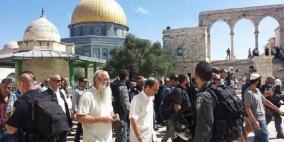 100 مستوطن يقتحمون المسجد الاقصى