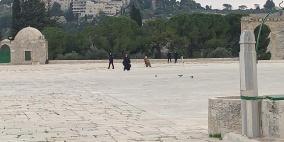 طواقم الاحتلال تنفذ أعمال مساحة في المسجد الأقصى وقبة الصخرة