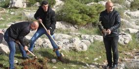إعادة زراعة أشجار اقتلعها الاحتلال شرق طوباس