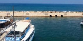 إسرائيل تحظر تسويق أسماك البحر المتوسط حتى إشعار آخر