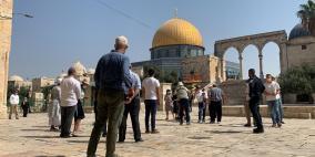 بالفيديو.. 56 مستوطنا يقتحمون باحات المسجد الأقصى