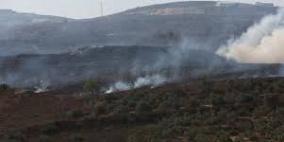 مستوطنون يحرقون 50 شجرة زيتون معمرة في بيت فجار جنوب بيت لحم