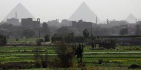 مصر تنجح في زراعة المحصول الأول من نوعه لمواجهة أزمة المياه