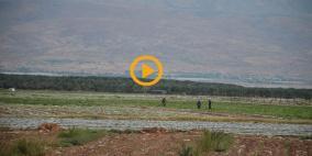 تلوث خطير يهدد زراعة الأغوار