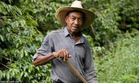 فيديو.. فلاح كولومبي يعثر على كنز عمره 200 عام