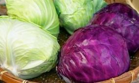 لهذه الأسباب الملفوف أفضل الخضروات للسكري
