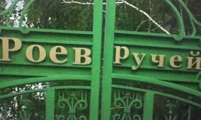سيبيريا: طفرة في مواليد حديقة حيوانات بسبب فيروس كورونا
